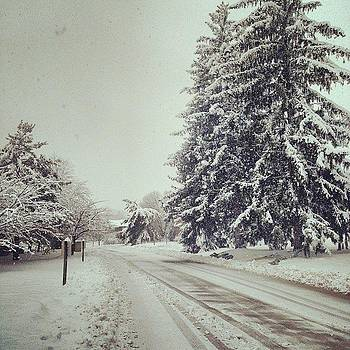 Snowstorm Of The Decade by Shahin Shaygan