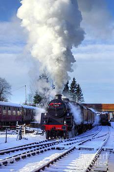 Snowy Day Departure by David Birchall