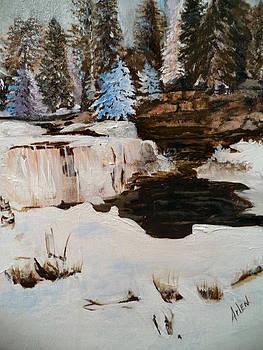 Snowy Falls by Arlen Avernian Thorensen