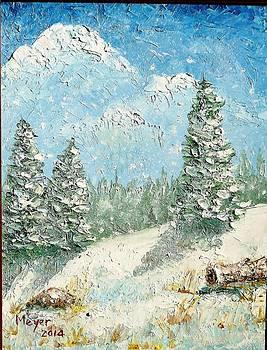 Snowy Hill by Meyer Van Rensburg