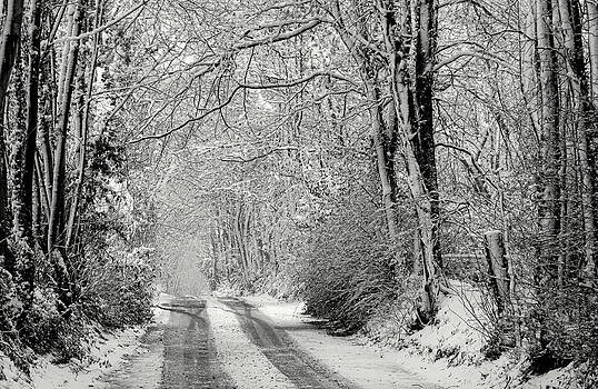 Snowy lane by Pete Hemington