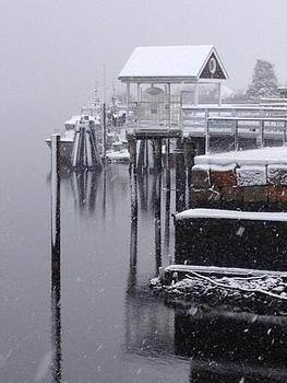 Snowy River by Jill Moran