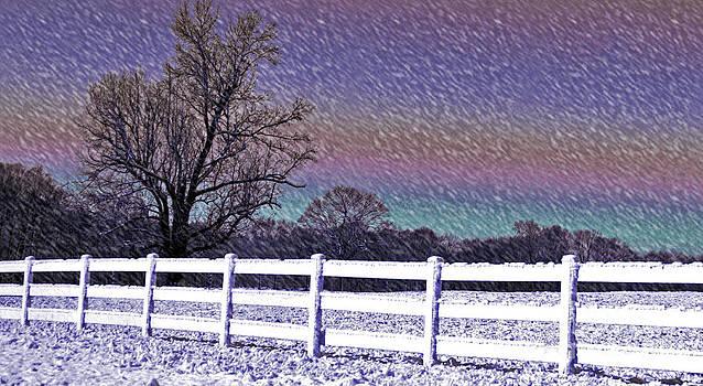 Snowy Snowy Night  by Lydia Holly