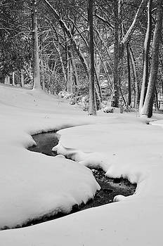 Snowy Stream by Jeff Rose