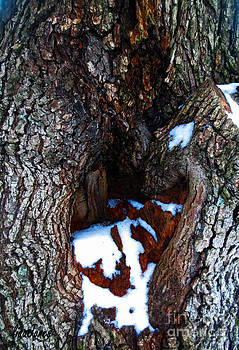 Snowy Tree Hideout by Lisa Jones