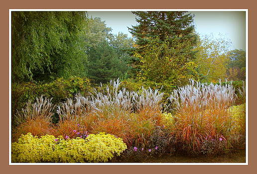 Rosanne Jordan - Soft Autumn Grasses