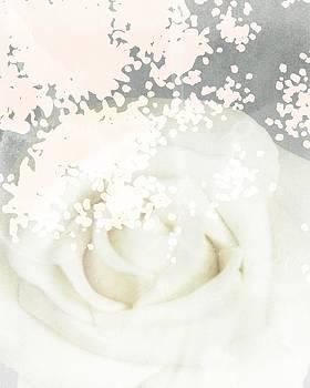 Soft Bloom by Lea Velasquez