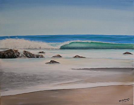 Soft Sea by Bob Hasbrook