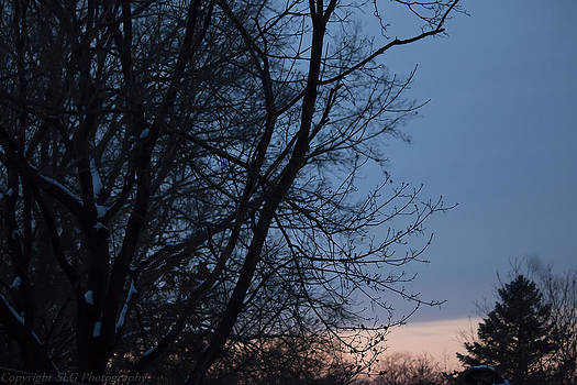 Soft Sunset by Stacie  Goodloe