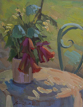 Diane McClary - Soliel Provence