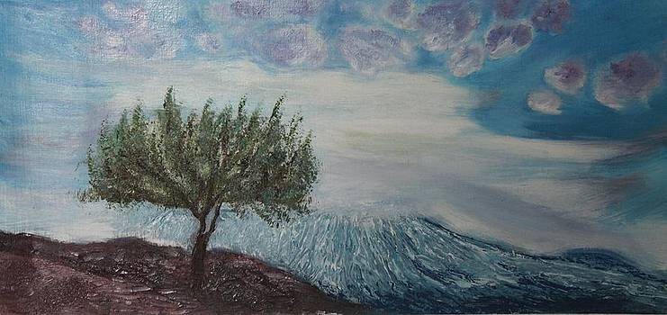Et Dieu crea le ciel et la terre by Alina Craciun