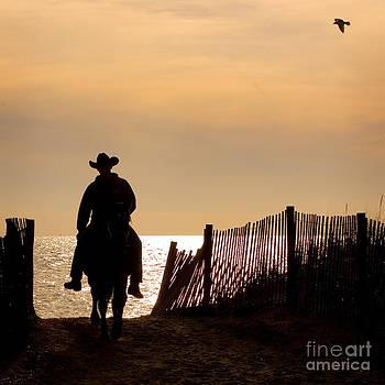 Solitude by Carol Lynn Coronios