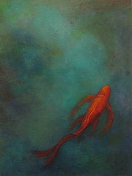 Solo Fish by Terri Messinger