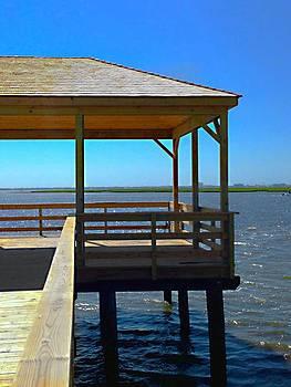 Somers Point Fishing Pier by Lisa Merman Bender