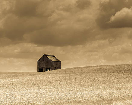 Somewhere over the Field by Neil Todd