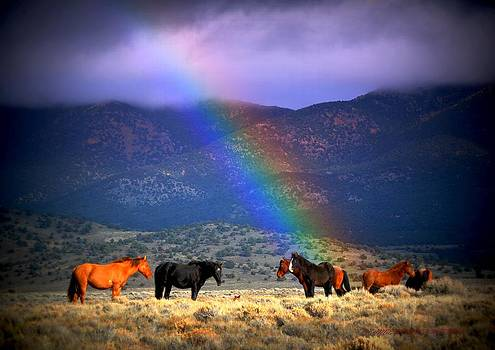 Somewhere Over The Rainbow by Jeanne  Bencich-Nations
