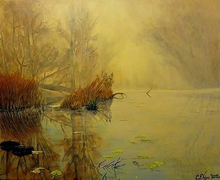 Somewhere by Svetla Dimitrova
