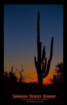 James BO  Insogna - Sonoran Desert Sunrise Poster Print