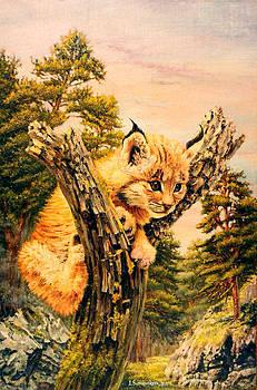 Soul of pine forest by Irina Sumanenkova
