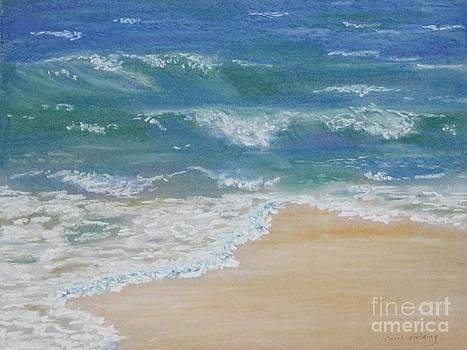 Sounds of Summer by Carol Fielding