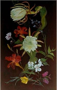 South African Wildflowers by Rita Palm
