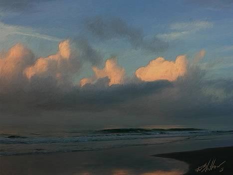 South Carolina Morning by Forest Stiltner