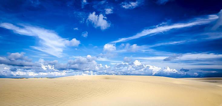 South Padre Island Sand Dunes by Debbie Karnes
