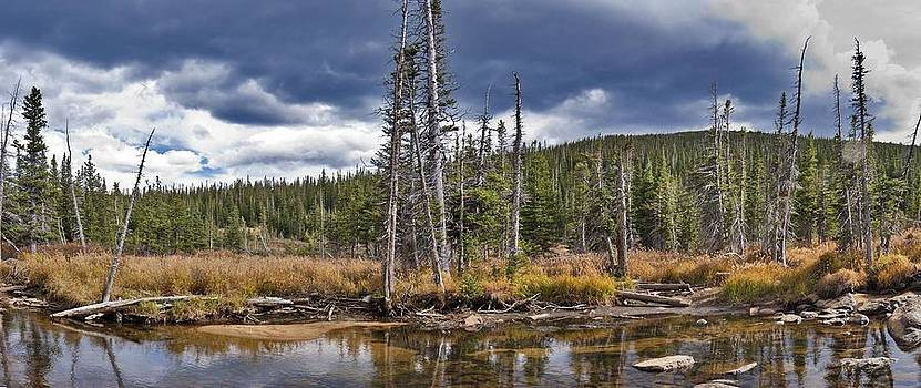South St Vrain Creek Panorama by Larry Darnell