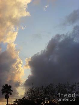South Texas Skies by Alexander Van Berg