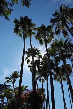 Southern California Days by Joe Varneke