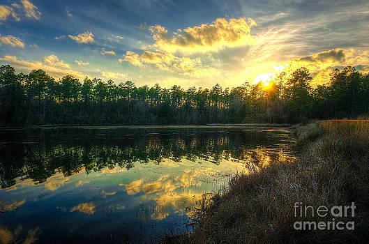 Southern Creek by Maddalena McDonald