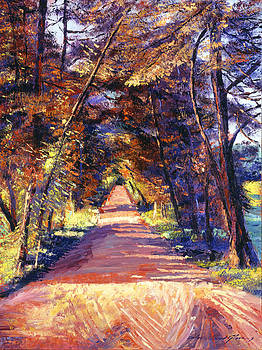 David Lloyd Glover - SOUTHERN FRANCE COUNTRY