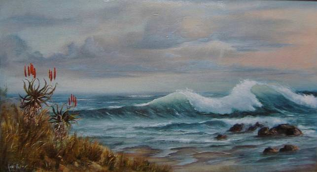 Southern Waters by Rita Palm