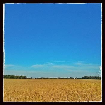 Soybean Harvest Time #hoosierskies by Sandy MacGowan
