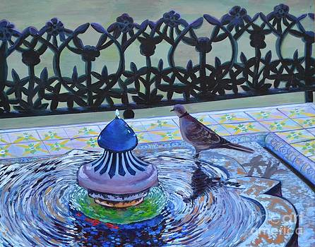 Spanish Dove by Kateryna Kurylo