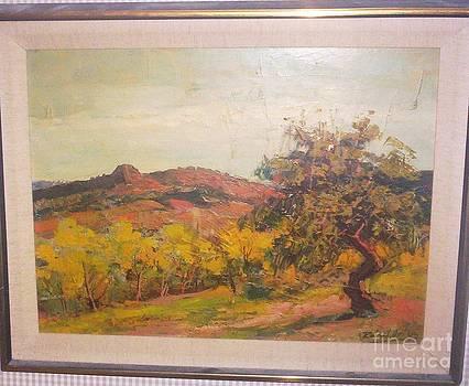 Spanish Hillside  by Raphael Ortega