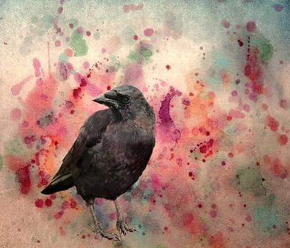 Gothicolors Donna Snyder - Color Splash Crow
