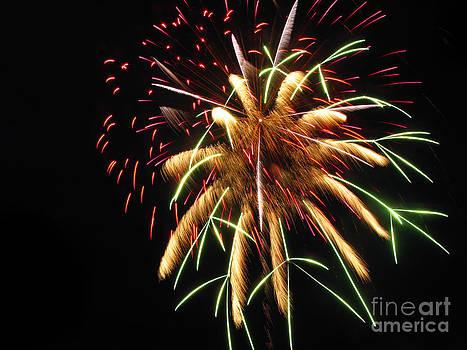 Spectacular Fireworks #01 by Ausra Huntington nee Paulauskaite