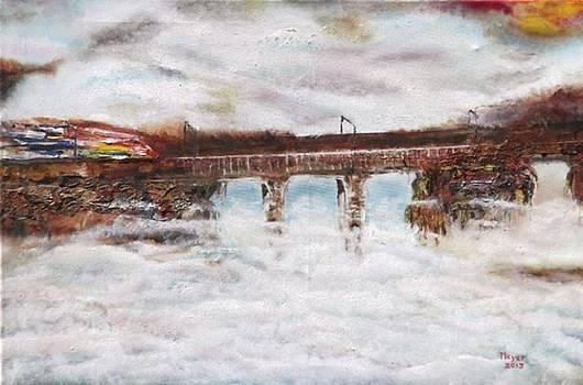 Speed and Mist by Meyer Van Rensburg