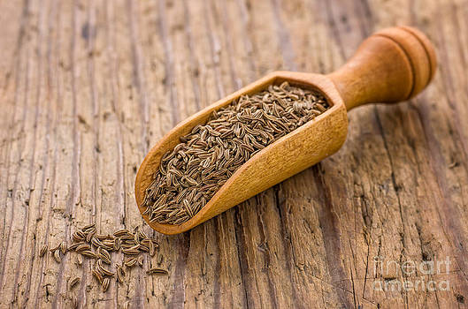 Spice scoop with cumin by Palatia Photo