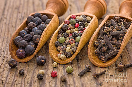 Spice scoops with juniper berries pepper and cloves by Palatia Photo