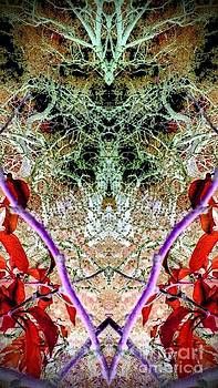Spider Web 3 by Karen Newell
