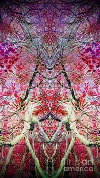 Spider Web 4 by Karen Newell