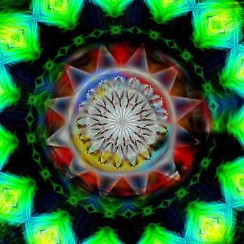 Spiked Kaleidoscope by Jo Nathon Dutton
