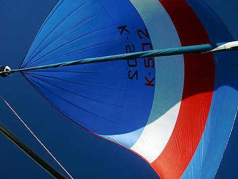 Spinnaker Flying by Tony Reddington