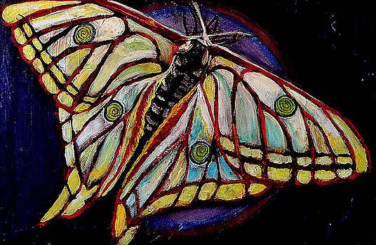Spiral Butterfly IX by Shira Chai