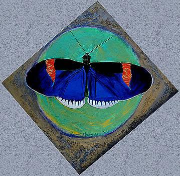 Spiral Butterfly V by Shira Chai