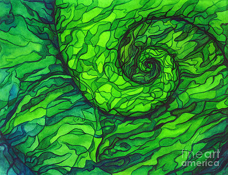 Spiral In Spiral Out by Jennifer Turnbull