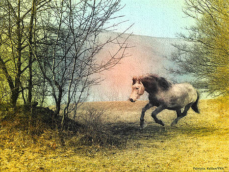 Spiritus Equus by Patricia Keller