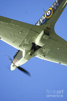 Spitfire 2 by Alan Oliver